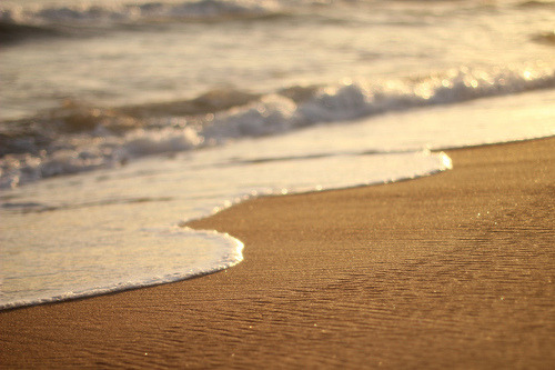 -inspired:  (by jillian* ann)   God, I miss the beach.
