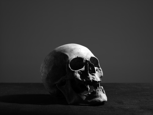 photographer: Hedi Slimane black and white, skull HEDI SLIMANE DIARY