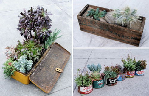 Upcycled Planter and Container Inspiration Roundup | Apartment Therapy Re-Nest