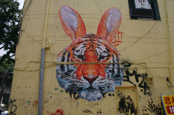 Wooster Collective: Gaia's Tiger Rabbit in Hongdae, Seoul