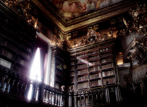 bienenkiste:  The Baroque library/Biblioteca Joanina (King John's Library)