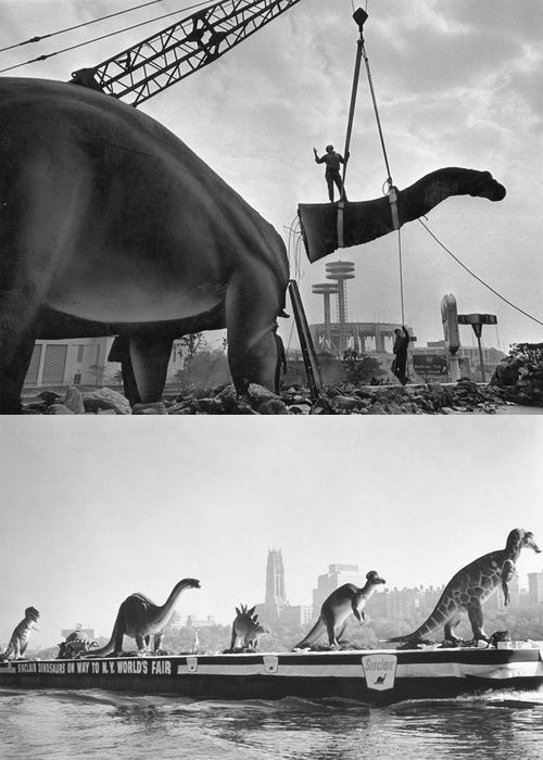 Dinosaur models on the Hudson River, en route to the 1964 New York World's Fair, New York 1960s by straatis  (via nevver) now I always think RAWR!!!! when I see a dinosaur