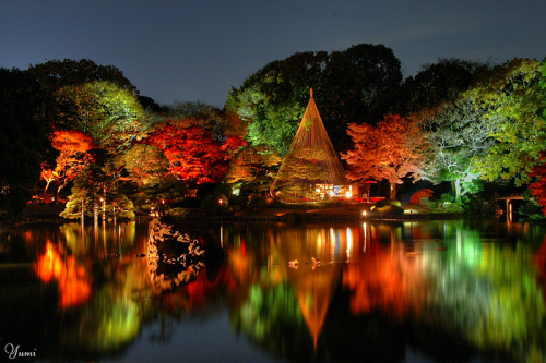 sunshine1971:  teremtettvilag:    Japanese garden at night in Rikugi-en, Tokyo by Yumi    (via dangel799)