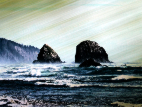 janinesu:  2005 | cannon beach. oregon. united states.