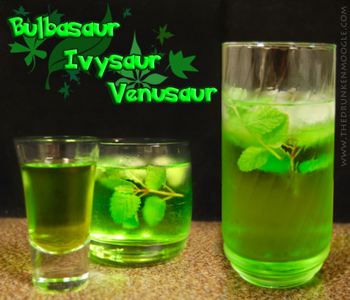 Bulbasaur, Ivysaur, Venusaur (Pokemon Shot and Cocktails) Ingredients:Bulbasaur-1/2 shot lime vodka1/4 shot lime juice1/4 shot melon liqueur  Ivysaur-1 shot lime vodka1 shot lime juice1 shot melon liqueur1 shot sprite Venusaur-1 Bulbasaur1 Ivysaur1 shot lime vodka1 shot lime juice1 shot sprite  Directions:  For the Bulbasaur shot, simply mix all three ingredients into a shot glass.  For the Ivysaur cocktail, shake all alcoholic ingredients, pour over ice in a rocks glass, then add Sprite to fill.  Add a stem of mint as a garnish.  Finally, to evolve to the Venusaur cocktail, shake a Bulbasaur shot together with the alcoholic ingredients of an Ivysaur cocktail, along with an additional shot of lime vodka and lime juice, then pour into a highball glass and fill with Sprite.  Again, add a few leaves of mint as a garnish.  Check out our other Charmander, Charmeleon and Charizard cocktails, as well as our Squirtle, Wartortle, and Blastoise cocktails. (Drink created and photographed by The Drunken Moogle)
