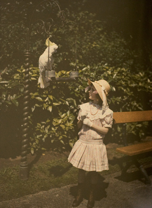 birdnerd:  paradisebutterflies:  Paul Sano, Girl and parrotc. 1920, autochrome 12 x 9