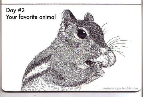 Day 2: your favorite animal i like chipmunks because they can stuff food into their mouth being frowned upon by the society. this is by far the sloppiest animal drawing i've made in the series:p haven't even erased the pencil lines. it also doubles as the C entry.