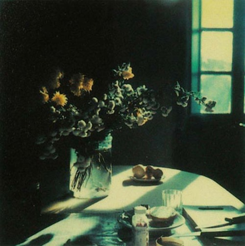 "Polaroid photo taken by Russian filmmaker Andrei Tarkovsky ""Tarkovsky  thought a lot about the ""flight""  of time and wanted to do only one thing: to stop it – even if only for a  moment, on the pictures of the Polaroid camera."" from a selection of Tarkovsky polaroids via riowang.blogspot"