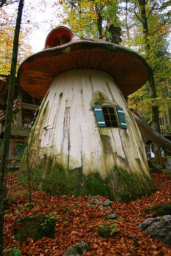 thebeldam:  spriteinthecity:  myaloysius:  mousiemasala:  fairy-ish:House under the trees (by ntr23)(via trippingonivy)