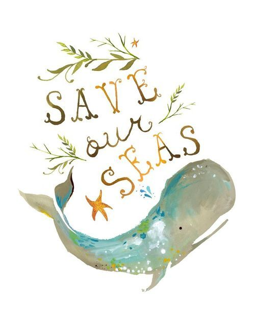 save our seas illustration by katie daisy