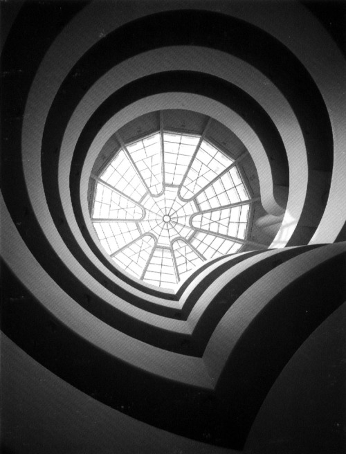 "Solomon R. Guggenheim Museum, Interior, via http://www.thestandardedition.comThe ""sensuous impulse"" in design, features the use of organic forms in nature, such as the sinuous S-curve, mimetic detailing and sensuous curves. Famous during the Rococo style during the mid 18th century and the Art Nouveau style in the late 19th century, this impulse paved the way for a new era in European art.In design, we see a dichotomy between the linear and the curvature aspects. Depending on the political and economical situation, the favorable aspect changes. In this modern day and age, the linear and rational aspect is more dominant as the economical situation is bad resulting in less expenditure on luxurious and irrational designs. This rational thinking instills the use of rational design.When looking at design and architecture in the near future, with the new skills and ways of using materials, we see the pendulum swinging back towards the irrational side. We can expect to see the repetition of the Rococo and Art Nouveau periods in a more simplified way, without the complex and luxurious ornaments, evident in the Guggenheim Museum."