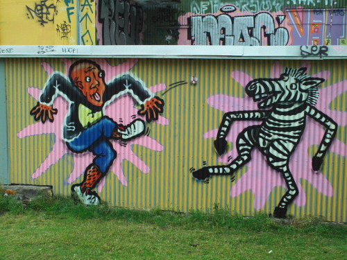 jimforce:  Reykjavik, Iceland Graph  graff jim, graff… in iceland you may find yourself playing hacky sack with zebras…