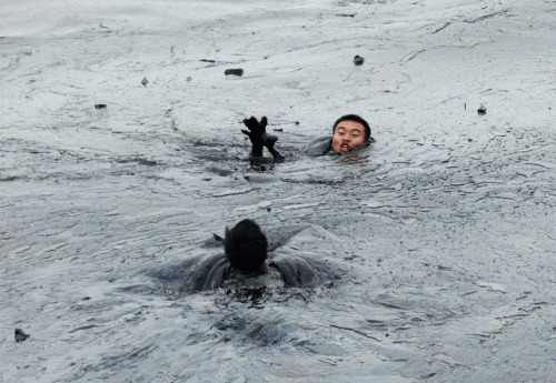 Oil Spill in Dalian, China. The Big Picture has a whole album to document the madness.