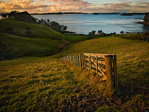 theworldwelivein:  Scandrett Regional Park, north of Auckland, New Zealand © Nick^D