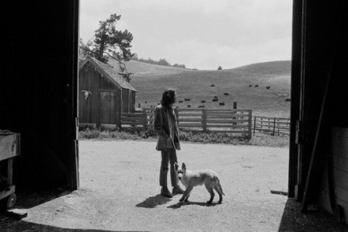Neil Young on his ranch