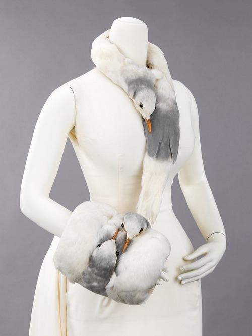 Accesorry Ensemble | c. 1880 Flying Rats!? No it's a muff and scarf..duh!  A rare example made from the heads and feathers of gulls, this accessory set represents the passion for using bird feathers and bird parts to decorate hats and other high-style fashion accessories in the 19th century. The practice ended in the early 20th century as birds were becoming extinct in order to supply the fashion industry. Even among examples from the period, this set stands out for its unusual design. The nestling of the two heads on the muff enhances the overall sense of warmth provided by the object, while the neckpiece draws attention to the wearer's own swan-like neck. A set like this would have been been worn by an elite member of society who could afford to be somewhat unconventional in her taste.