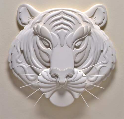 Jeff Nishinaka : the most beautiful paper sculptures you've ever seen.