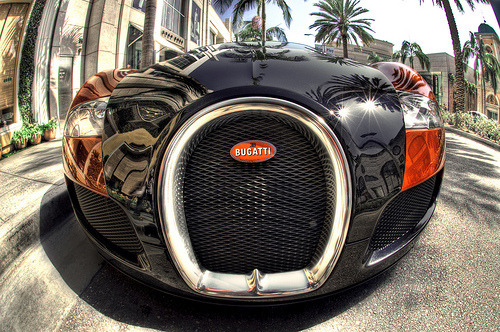 Nose of a dog Starring: Bugatti Veyron  (by Keen Eddie)