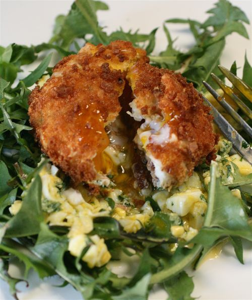 Deep Fried Bacon & Eggs with Lemon-Egg Vinaigrette.