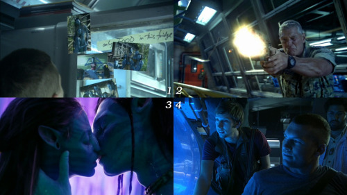 "1 movie - 4 frames. ""Avatar"": 4-1-3-2"