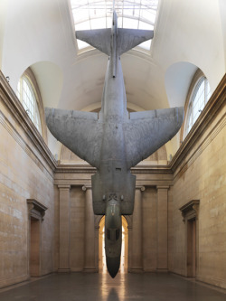 """Harrier"", 2010 by Fiona Banner at Tate Britain."