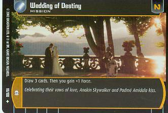 Wedding of Destiny