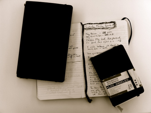 Where I write down all my ideas, good or bad. I love Moleskine notebooks. I'll sell them to you. How much?