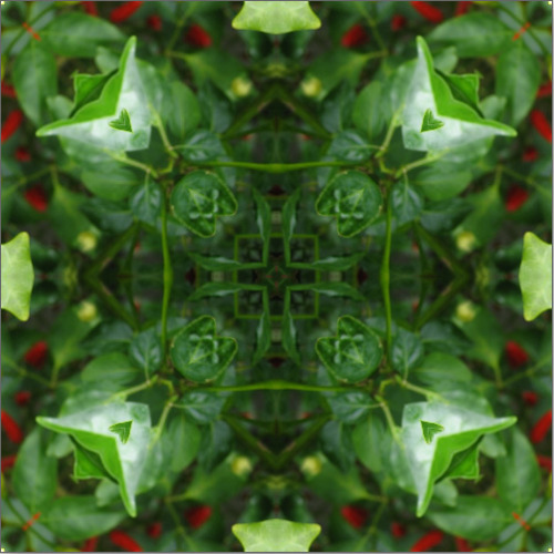 I've been playing around some more with my HTML5 Canvas Kaleidoscope experiment. I've made it more robust and played around with the flickr API to get more out of it (you can view other flickr users photos in it now). The main improvement is that the you can link to a particular photo being viewed through the kaleidoscope. http://www.experiencebureau.com/toys/kaleidoscope/