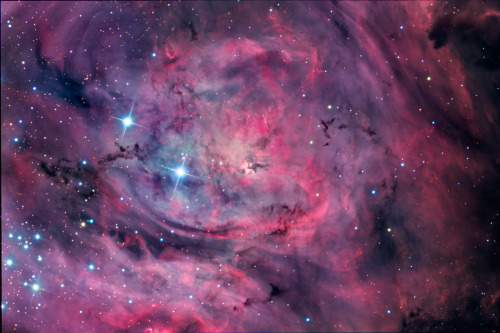 M8: The Lagoon Nebula Credit & Copyright: Steve Mazlin, Jack Harvey, Rick Gilbert, and Daniel Verschatse (Star Shadows Remote Observatory, PROMPT, CTIO) Explanation: This beautiful cosmic cloud is a popular stop on telescopic tours of the constellation Sagittarius. Eighteenth century cosmic tourist Charles Messier cataloged the bright nebula as M8. Modern day astronomers recognize the Lagoon Nebula as an active stellar nursery about 5,000 light-years distant, in the direction of the center of our Milky Way Galaxy. Remarkable features can be traced through this sharp picture, showing off the Lagoon's filaments of glowing gas and dark dust clouds. Twisting near the center of the Lagoon, the brighthourglass shape is the turbulent result of extreme stellar winds and intense starlight. The alluring view is a color composite of both broad and narrow band images captured while M8 was high in dark, Chilean skies. It records the Lagoon with a bluer hue than typically represented in images dominated by the red light of the region's hydrogen emission. At the nebula's estimated distance, the picture spans about 30 light-years.
