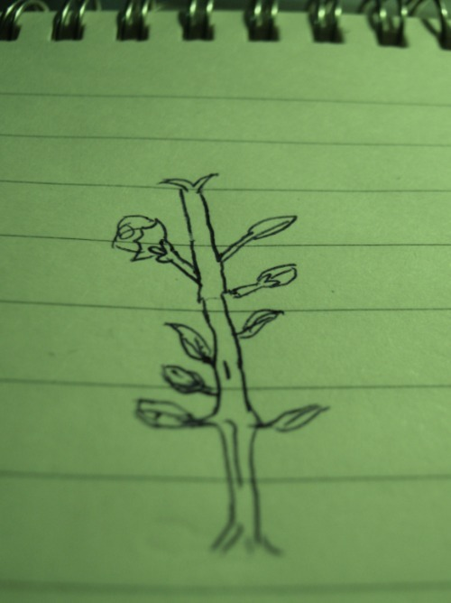 30 days drawing challenge Day 17: Favorite Plant I don't have a favorite plant. So here is a plant.  Sorry for delaying, I'm just getting lazy (I didn't even want to scan this)