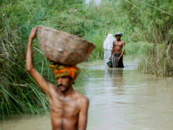 Flooding in Pakistan A family wades through flood waters in Shah Bela village in Sindh province. Pakistan's worst floods in 80 years have affected 12 million people, according to national disaster officials Photographer: Akhtar Soomro/Reuters