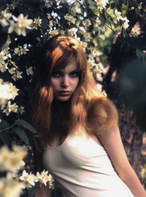 youngmistergrace:  Madeline Smith