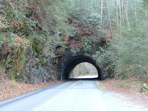 Great Smoky Mountains National Park Tennessee 2006_1115Image0238 (by mrchriscornwell photography ®)