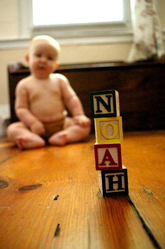 Notes from Noah  I turned eight months old on Saturday! I am doing lots and lots. I am just about crawling. I pretty much get to wherever I want to go. I sleep in my own room, in my own bed. I eat lots of my own food and lots from my mommy's plate too. I have grown out of my favorite toy, the Jumparoo. Life is pretty swell.