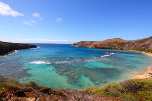 fuckyeahphotographics:    Hanauma Bay, Hawaii http://drummeroy.tumblr.com/ http://www.flickr.com/photos/rnphotography/