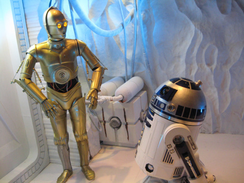 Celebration V: C-3PO & R2-D2(Photo by Bonnie Burton)