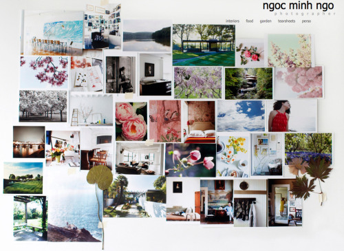 » so inspired by Ngoc Minh Ngo's photographs