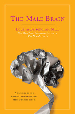 'The Male Brain', or How to Write a Pop Science Book without Evidence - David DiSalvo - Brainspin - True/Slant