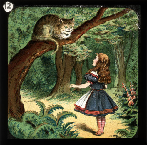 Alice in Wonderland magic lantern slide