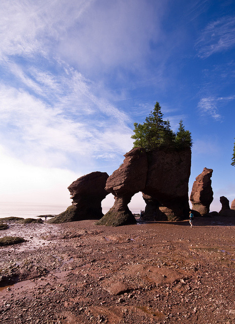 Alien Formations (by Property#1) Hopewell Rocks At   low tide, explore quiet coves with flowerpot-shaped  rock formations  bearing such curious names as 'Mother-in-Law', 'ET' and 'Lover's Arch'.  Then, as the tide gently shifts, experience the wonder of nature as  100-billion tonnes of salt-water slowly fills the Bay of Fundy. These are the highest tides in the world. And they happen twice a day….every day. At  high tide, paddle a kayak around these same sandstone pillars or visit  our multi-media interpretive centre where you will learn about the  fascinating geology and forces that crafted them. Discover the colourful  Mi'kmaq legends created to explain this unique phenomenon of these  extraordinary tides. And that's not all…in late July and early  August, witness the awe-inspiring aerial dance performed by thousands of  migrating shorebirds. The Hopewell Rocks is a place to pause…a  place to appreciate a remarkable story interwoven through time, tide,  and the intricacies of nature.