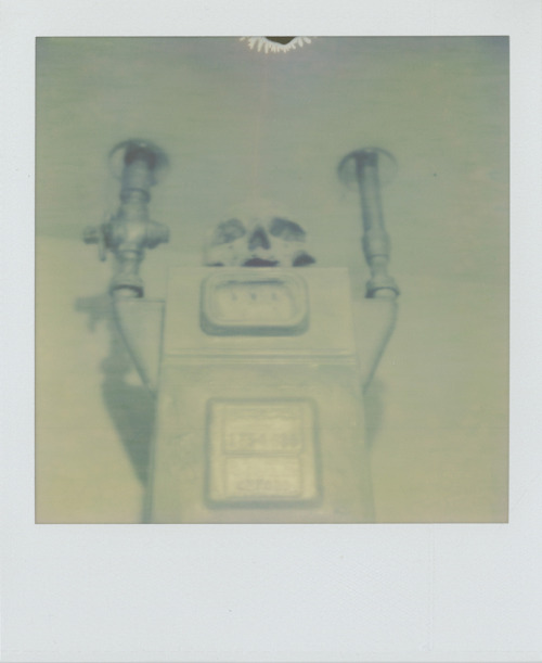 Skullbot2010Polaroid SX-70 / PX Color Shade