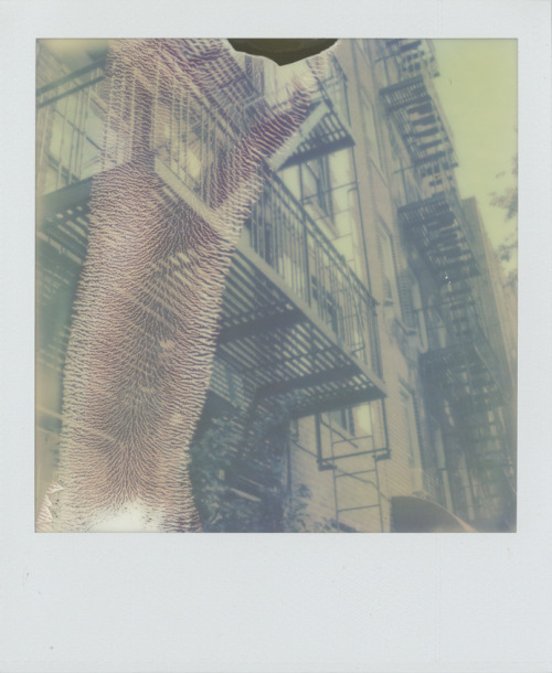 Fire Escape2010Polaroid SX-70 / PX Color Shade
