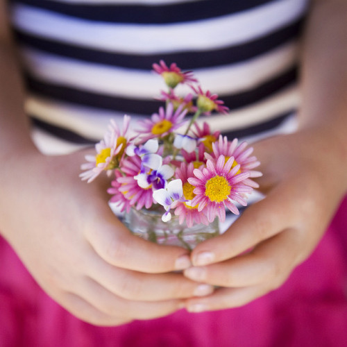 photoholic:  little bouquet (by sue.h)