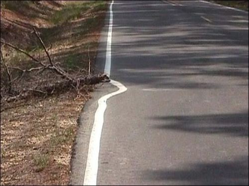 WINNER:  Not My Job Award