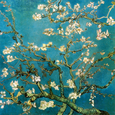aicul:       — vincent van gogh, almond branches in bloom (1890)  Executed in Saint Remy during 1890, the year of Vincent's death. It was a gift that Vincent made to his brother Theo Van Gogh and his wife Johanna Bonger for the birth of their son, named Vincent Willem.