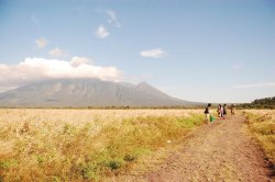 Savanna Bekol, Baluran National Park, East Java, Indonesia Photo by me submitted by: http://febryfawzi.tumblr.com - thanks!