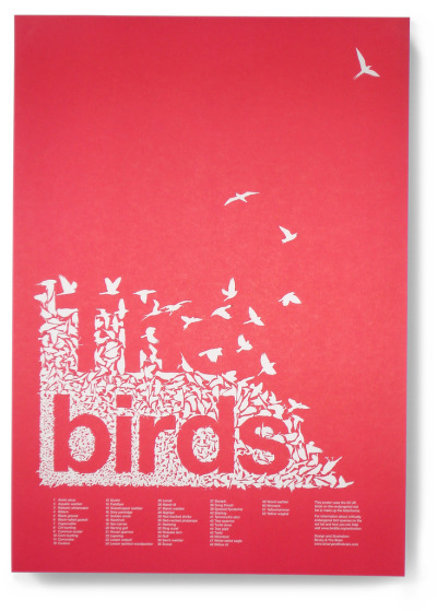 thingsorganizedneatly:  The birds This A2 poster was designed in association with BirdLife International to raise awareness of the 52 UK birds on the endangered red list. Each of the 52 birds used to create the letterforms are numbered for identification.