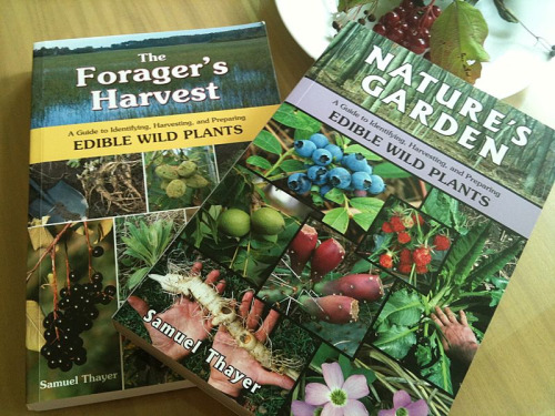 "On my shelf: Samuel Thayers's ""Nature's Garden"" and ""The Forager's Harvest."""