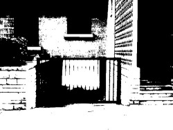 "Dithering is fascinating ! I am exploring the process using the Dither Lite Android application developed by Weasel Labs www.facebook.com/weasel.labs. Could ""the process of converting an image to true black and white (not gray scale) "" be applied to cinematic streams ?"