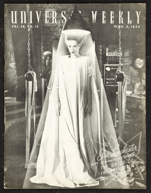The Bride of Frankenstein is one of my favorite icons. Amazing collection of Bride-inspired art here.